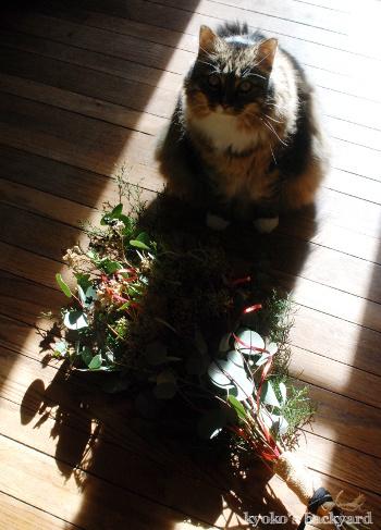 クリスマススワッグと猫柄ラッピングペーパー(と猫)_b0253205_07483537.jpg