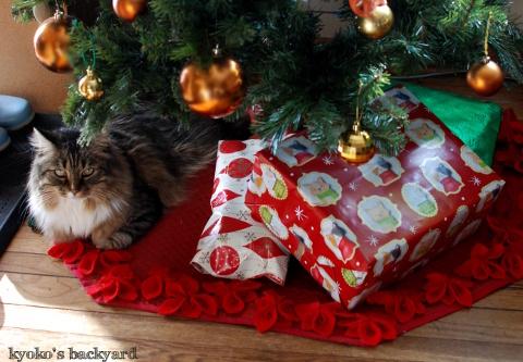 クリスマススワッグと猫柄ラッピングペーパー(と猫)_b0253205_07535822.jpg