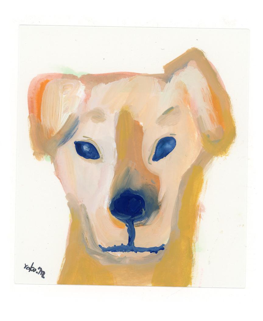 犬_e0247108_00485457.jpg