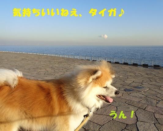 f0121712_14521225.jpg