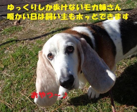 f0121712_15210315.jpg