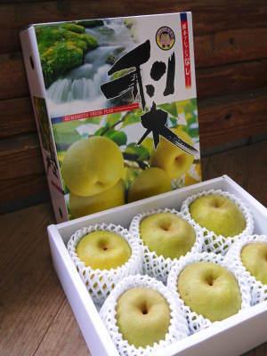 熊本梨 本藤果樹園 平成31年度も美味しい梨を育てるために、匠の冬の剪定作業スタートしました!_a0254656_16232724.jpg