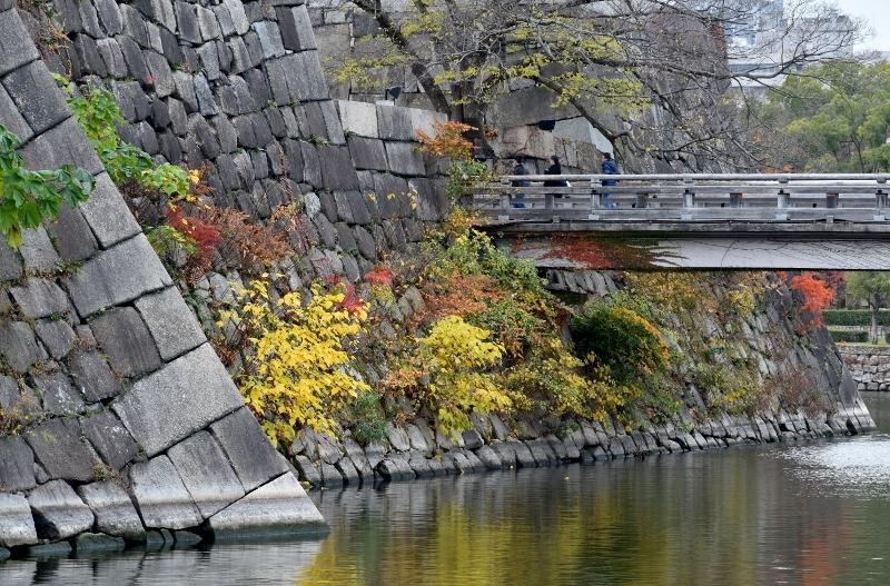 晩秋の大阪城 END_a0355356_23223067.jpg