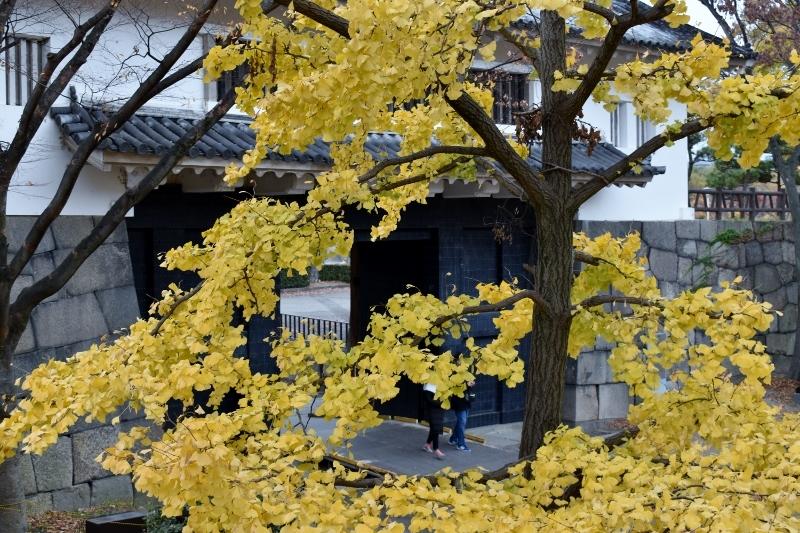晩秋の大阪城 END_a0355356_23231342.jpg