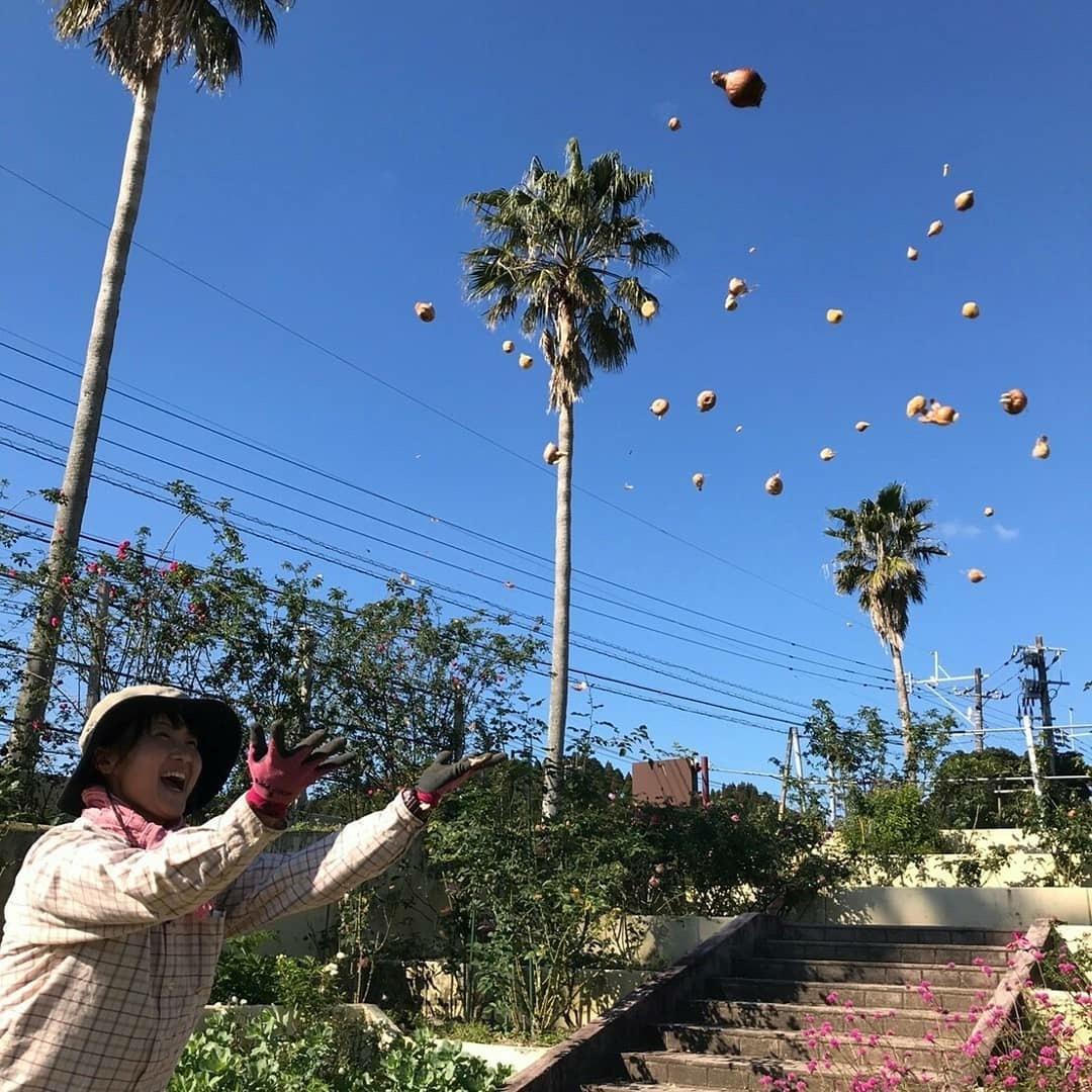 宙を舞った球根🌷・・・宮崎こどものくにガーデン再生物語_b0137969_07380195.jpg