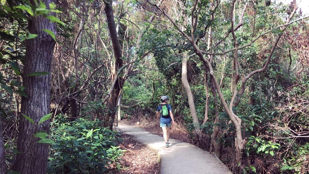 2018.12.14-17 4度目の香港 Trail & Beer 合宿 day2 ~マクリホーストレイル sec.2~_b0219778_21182477.jpg