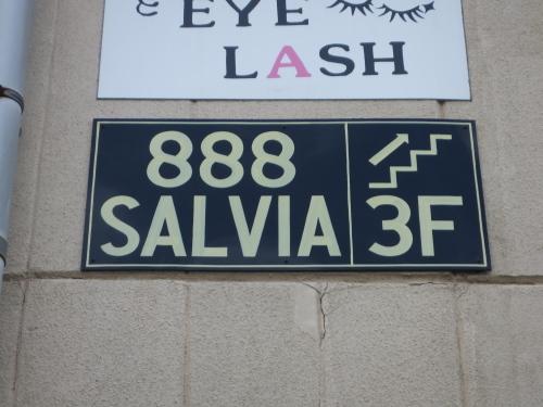 ◆ 888 SALVIA ◆_c0078202_15091305.jpg