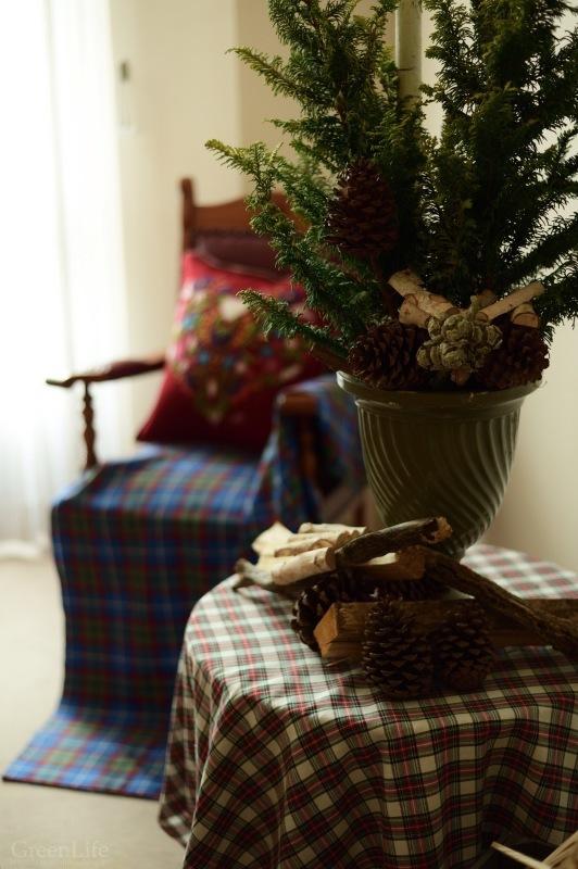 スコットランドのクリスマス_f0321522_20460062.jpg