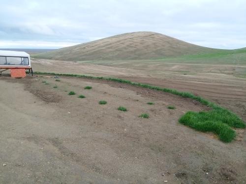 アメリカの砂漠に緑のパラダイス_e0295926_09293752.jpg