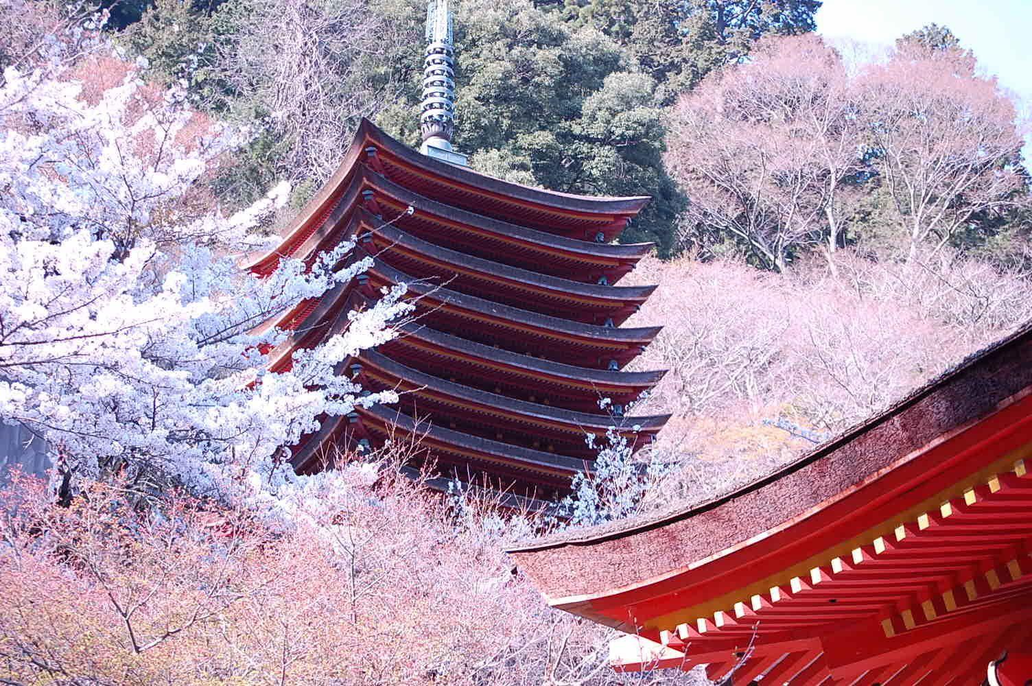 談山神社の春夏秋冬、すべての魅力を氏子総代が解き明かす_a0237937_20522365.jpg