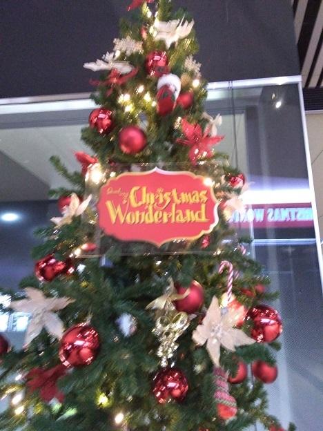 クリスマス・ワンダーランド_d0006467_23133493.jpg