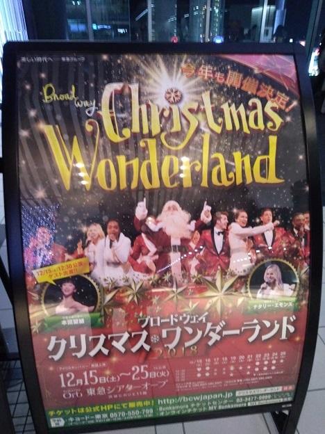 クリスマス・ワンダーランド_d0006467_23144976.jpg