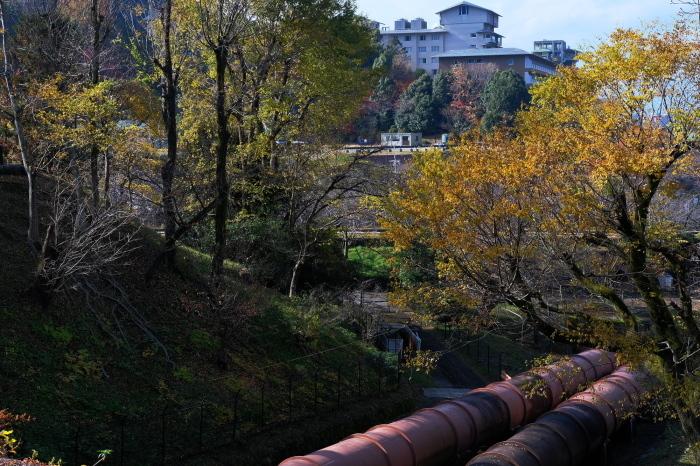 祇園白川~蹴上 紅葉2018_f0021869_00323397.jpg