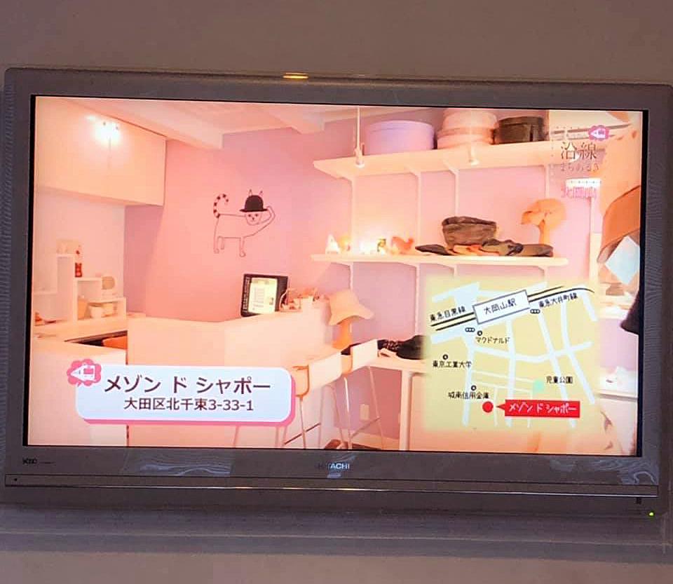 "TV \""サタデーイッツコム\""_b0195783_15025020.jpg"