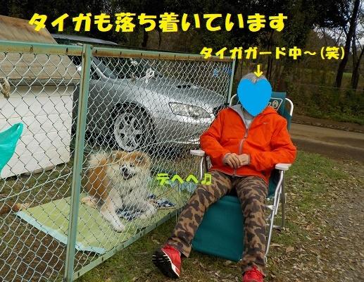 f0121712_07115859.jpg