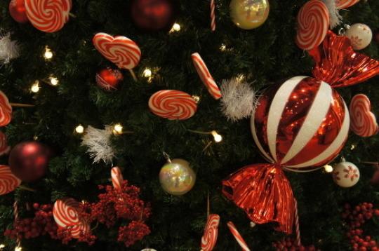 【銀座でクリスマス】_f0215714_16230275.jpg