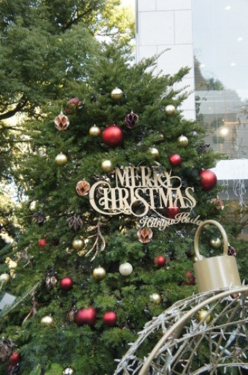 【銀座でクリスマス】_f0215714_16235101.jpg