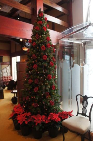 【銀座でクリスマス】_f0215714_16260584.jpg