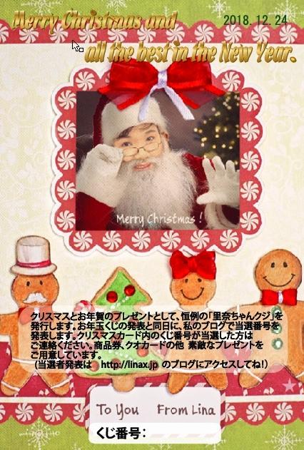 今年も色々とお世話になりました。〔クリスマス・年末年始のご挨拶〕_e0124015_03111650.jpg