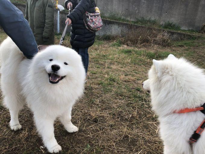 2018年冬 横須賀ミニオフ旅行 その2_f0128542_00423464.jpg