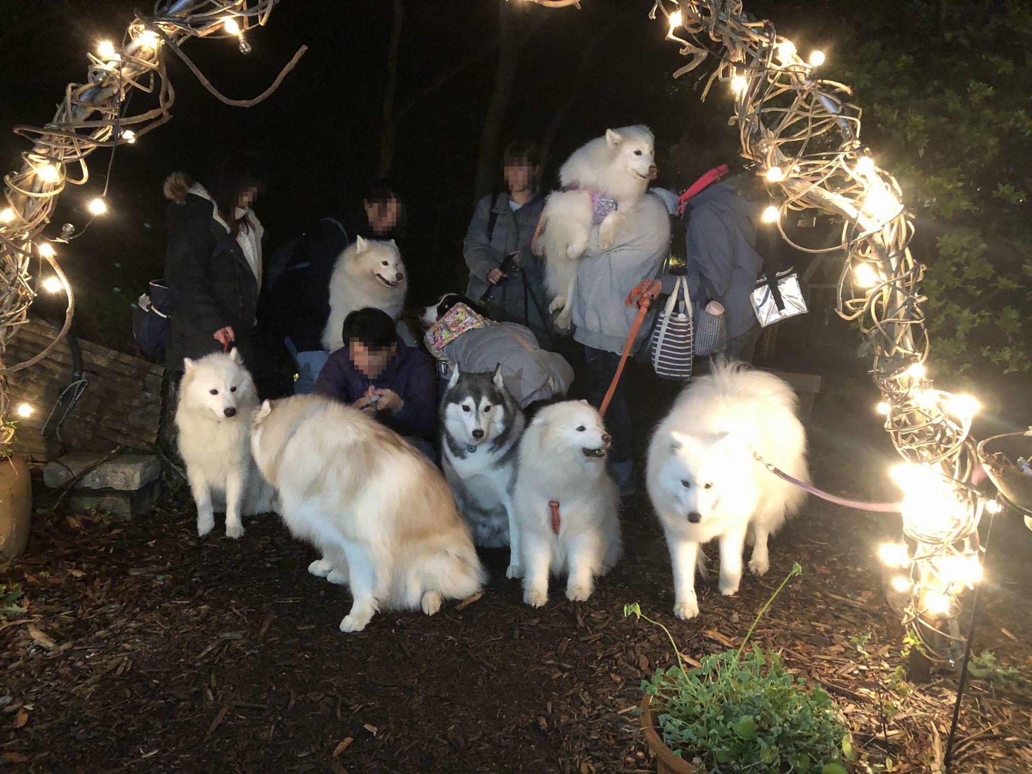 2018年冬 横須賀ミニオフ旅行 その2_f0128542_00573546.jpg