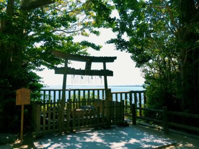 博多ひとり旅 1日目〜島と森と美術館と水炊き編~_b0405445_10024079.jpg