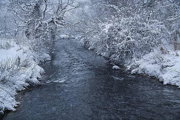 雪の北塩原       _e0271864_20533021.jpg