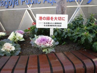 ガーデンふ頭総合案内所前花壇の植替えH30.12.17_d0338682_10260153.jpg
