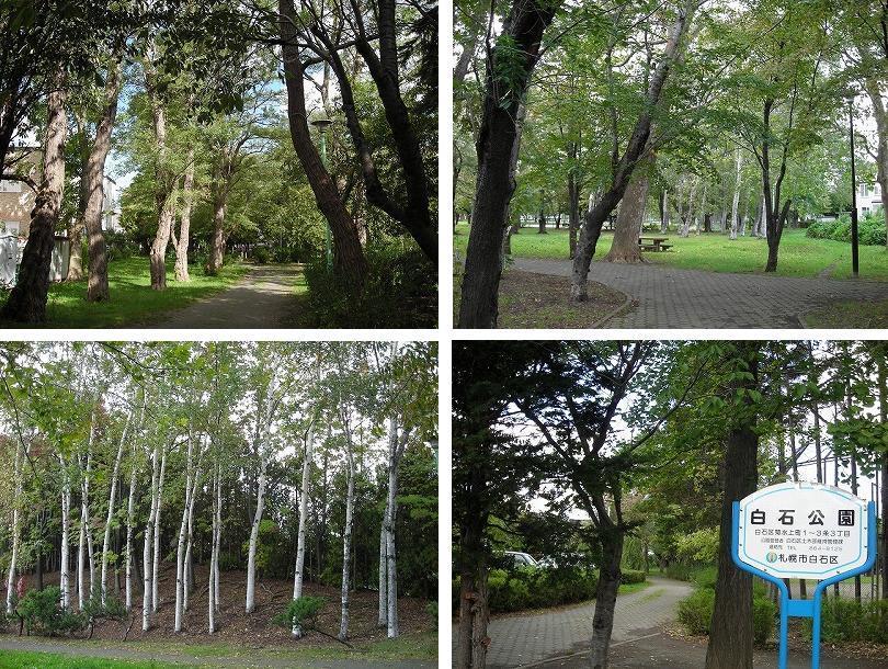 東札幌の公園ベルトを歩く(2)_f0078286_09461501.jpg