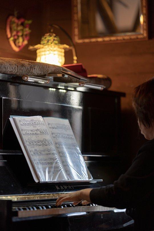 ピアノに聴き入る光蜥蜴_d0353489_22041617.jpg