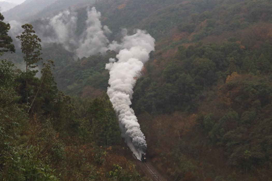 雨に膨らむ煙 - やまぐち・2018年 -_b0190710_13074873.jpg