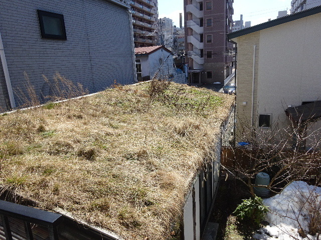 2018 屋上緑化の1年を振り返る_f0105112_18103783.jpg