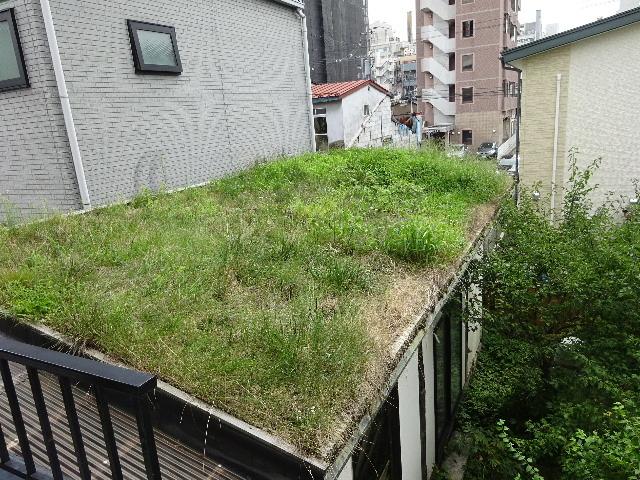 2018 屋上緑化の1年を振り返る_f0105112_18250053.jpg