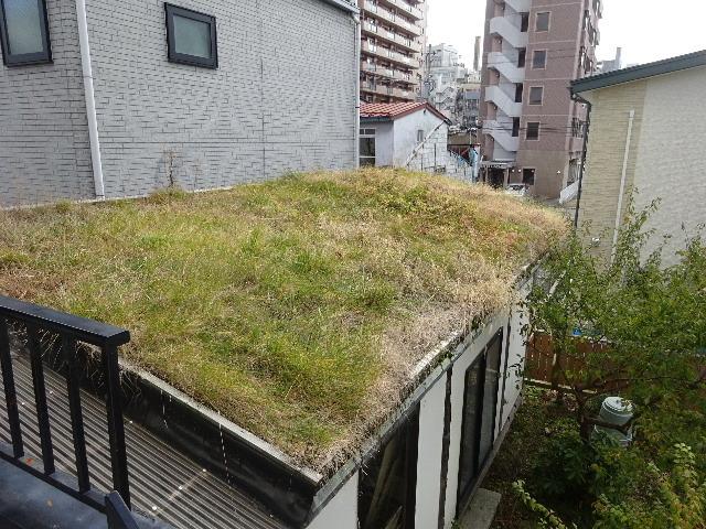 2018 屋上緑化の1年を振り返る_f0105112_18282346.jpg