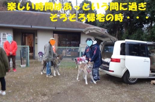 f0121712_15065794.jpg