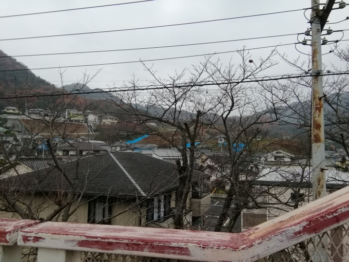 坂町小屋浦の冬至_e0094315_12162469.jpg