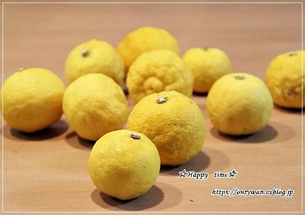柚子と満月とおまけのリク♪_f0348032_19175579.jpg