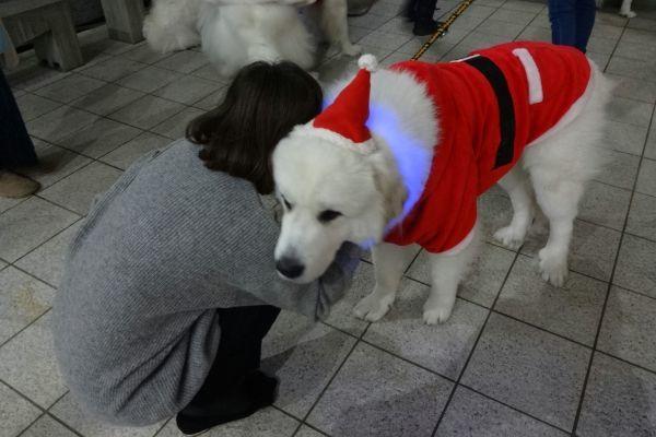 ワンダフル・クリスマス 梅田スカイビル ドイツクリスマスマーケット_d0145934_17155744.jpg