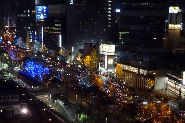 ワンダフル・クリスマス 梅田スカイビル ドイツクリスマスマーケット_d0145934_17182448.jpg