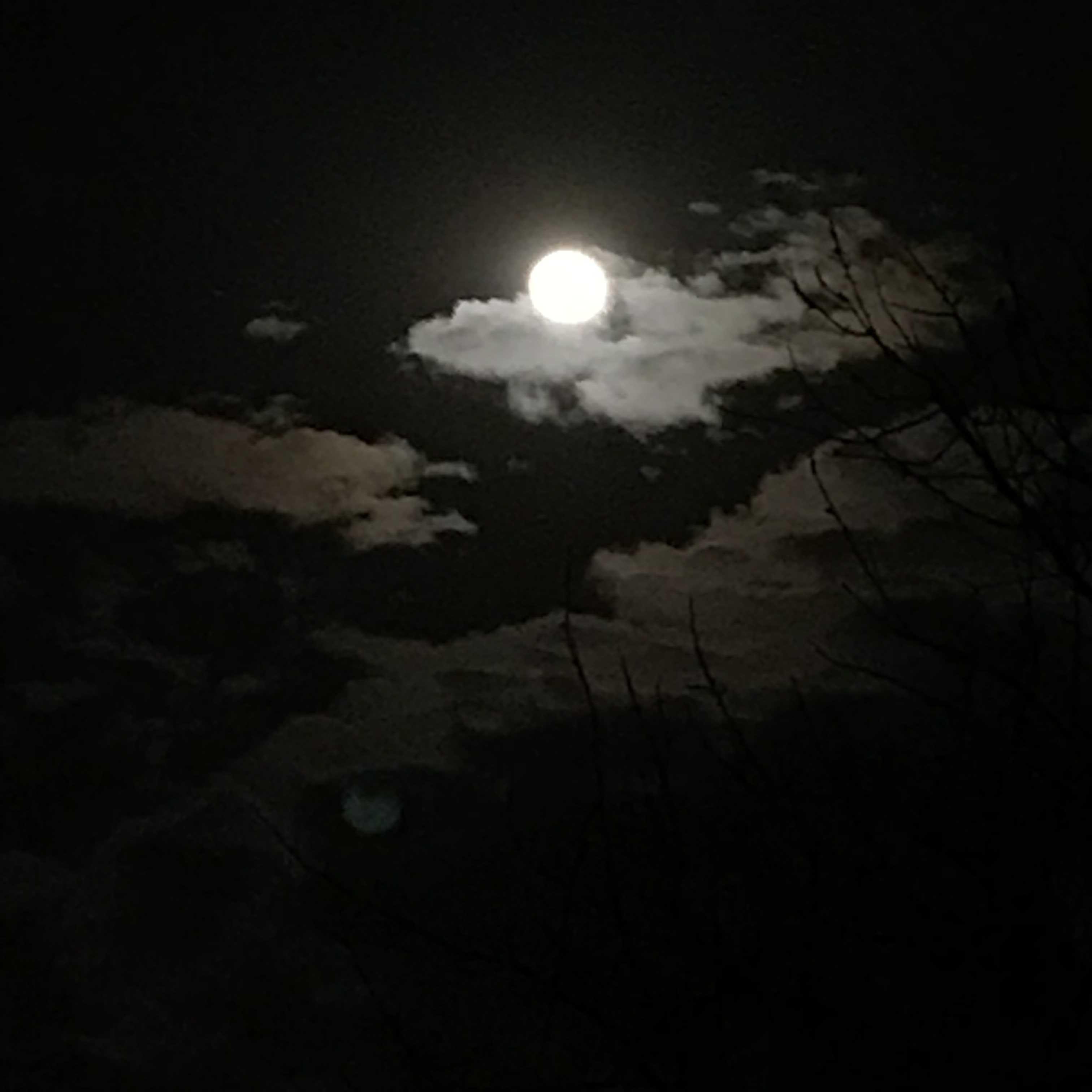 月夜_e0226943_22573698.jpg