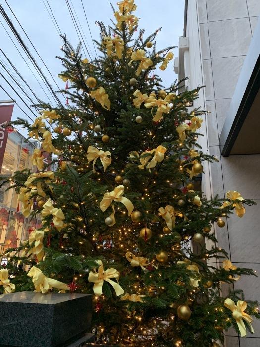 2018.12.22  メリークリスマス!! (今日は冬至)_a0083571_12383082.jpg