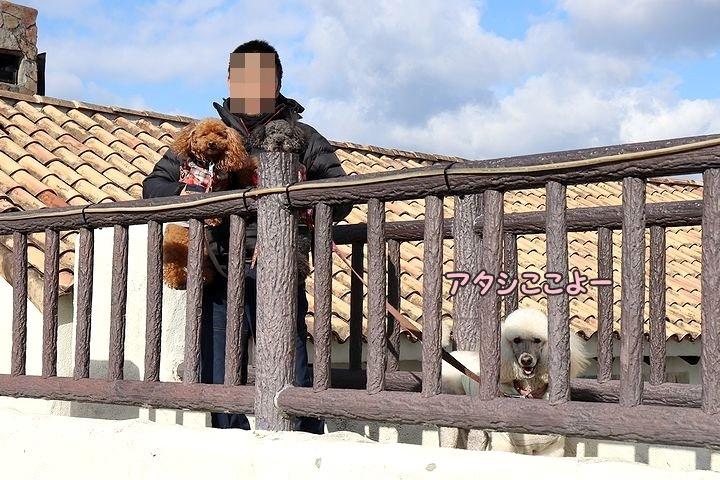 志摩地中海村(後編)【伊勢志摩旅行7】_b0111376_17153179.jpg
