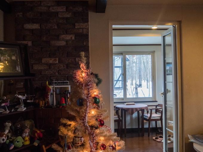白いクリスマスツリーとエゾリス君(ホンモノ)がコラボ!_f0276498_14034338.jpg