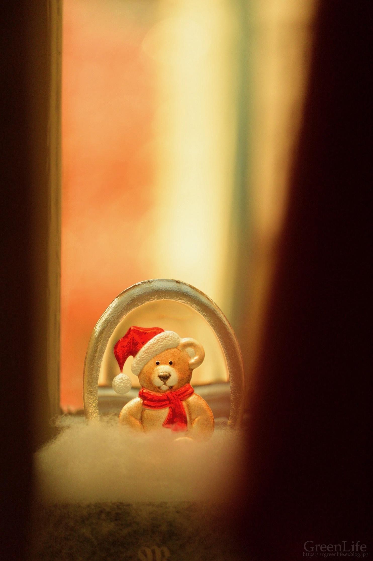 エストニアのクリスマス_f0321522_11161052.jpg