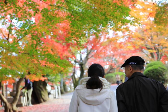 【三井寺】紅葉関西帰省 - 17 -_f0348831_00412220.jpg