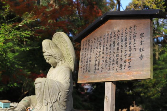 【三井寺】紅葉関西帰省 - 17 -_f0348831_00415568.jpg