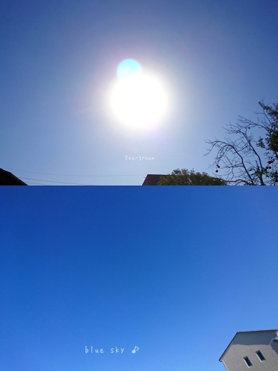 12/23(日)②        さんぽ病院うろこ雲。【12/21の事】_d0362666_20565463.jpg