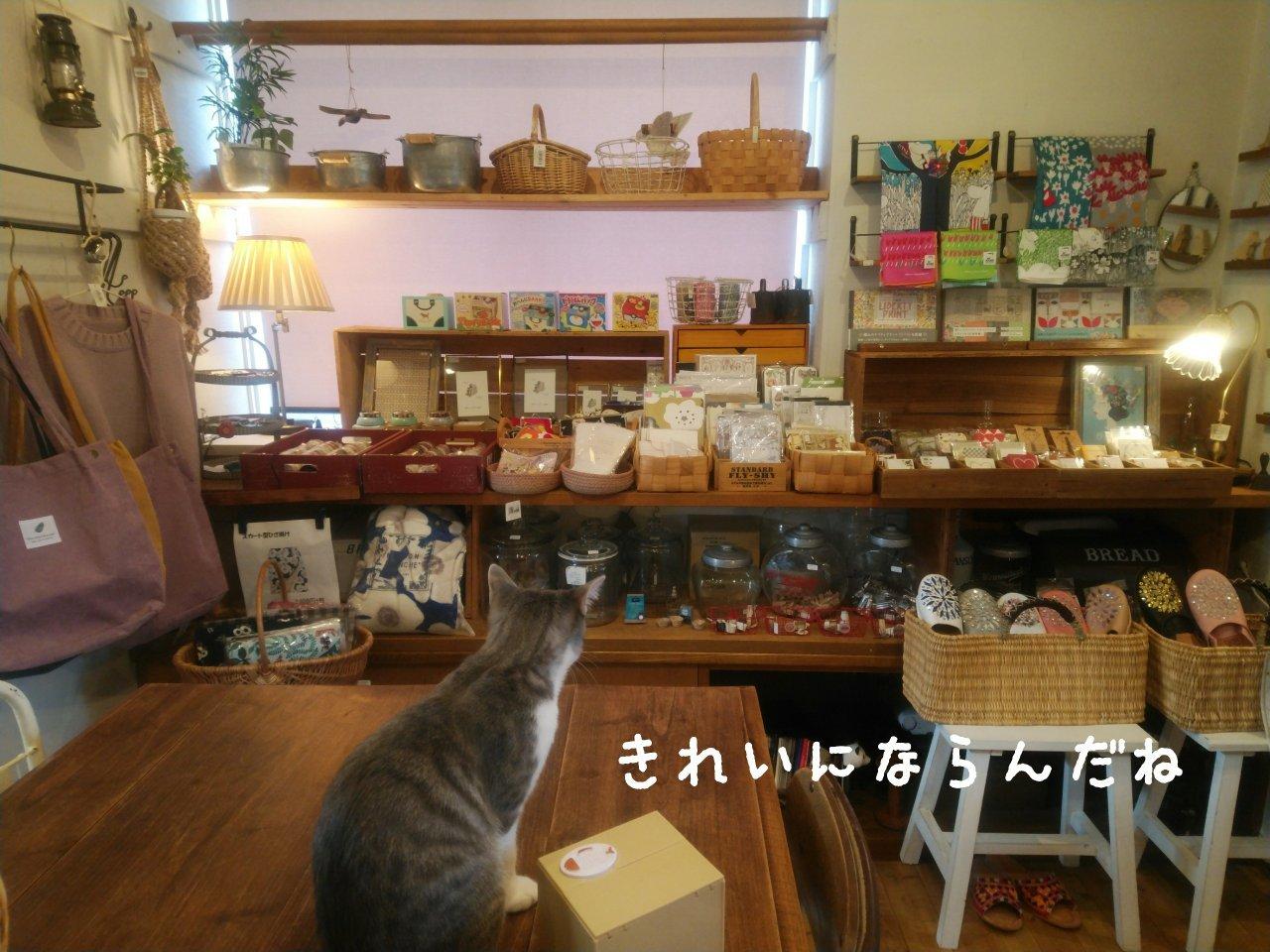 店内ディスプレイ②_f0255704_13523537.jpg
