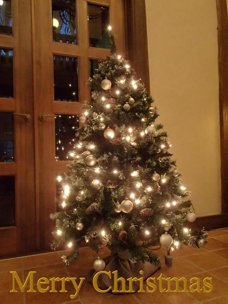 Merry Christmas_f0064906_14295587.jpg
