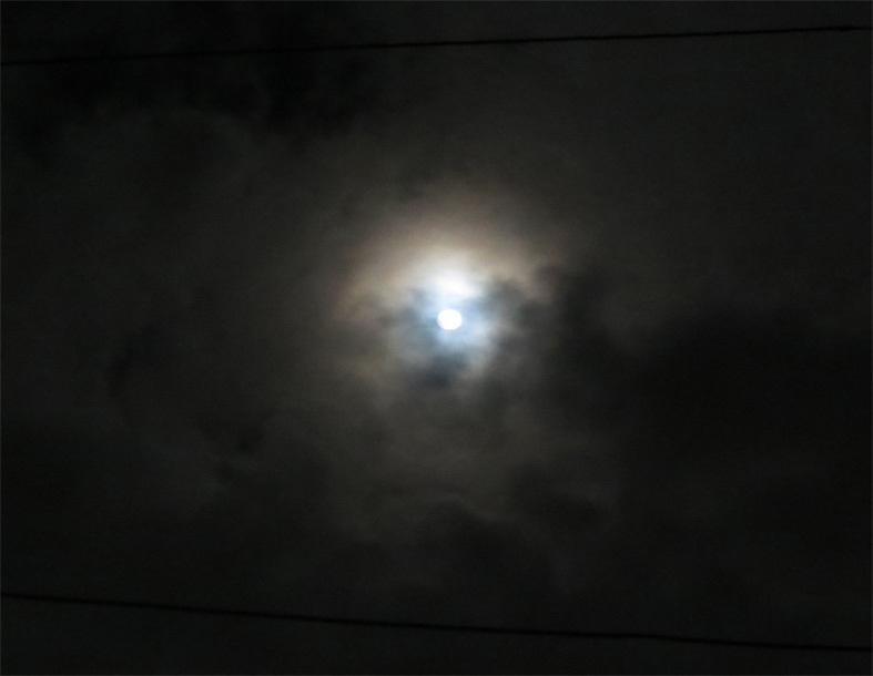 ■24日、何かが降りてくる宵――週替わりの夕暮れ[12/24]_d0190217_22430173.jpg